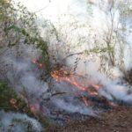 Incendio en Petén, muere un Hombre (le cayó en el pecho una roca)